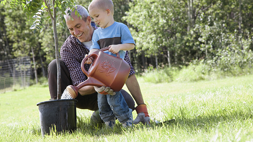 Grandfather with grandson watering a potted tree