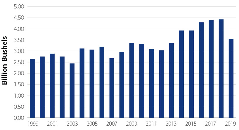 Chart of U.S. soybean production from 1999 -2019